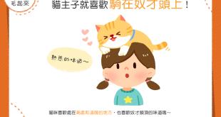 【喵喵行為學】欸?貓貓為什麼老是喜歡騎在我頭上?!