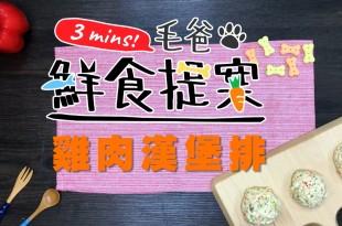 【毛爸鮮食提案】拍拍打打好開心,美味不油膩的—雞肉漢堡排!