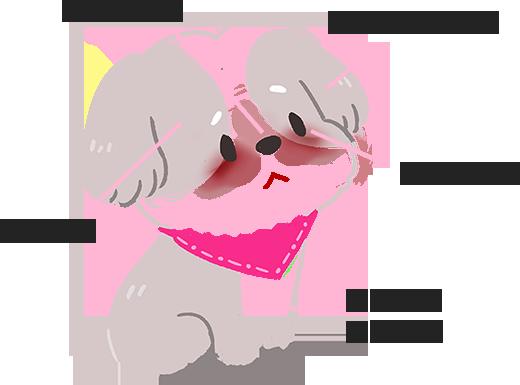 【汪汪康健】狗狗老是哭哭臉?快來看造成淚痕的5大原因!