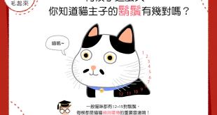 【喵喵冷知識】伺候了這麼久,你知道貓主子的鬍鬚有幾對嗎?
