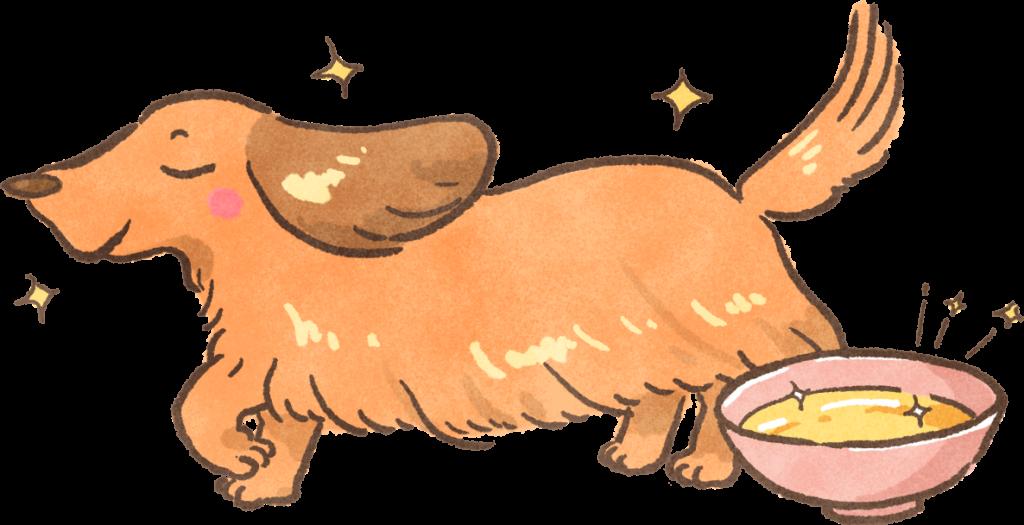 寵物毛孩食品解析貓狗油脂柔順毛髮吃什麼毛亮毛順毛光滑吃什麼食物毛囊健康脂肪魚油植物油雞油豬油牛油