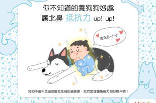 【飼主好安心】北鼻和狗狗只能二選一?狗狗能讓北鼻免疫力up!
