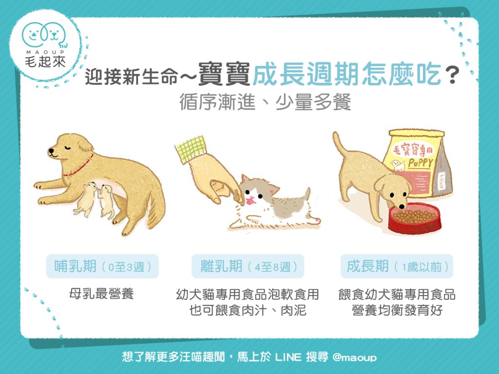 【媽咪幼兒飲食】迎接新生命~寶寶成長週期怎麼吃?
