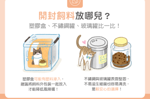 【汪喵餵養知識】開封飼料放哪兒?塑膠盒、不鏽鋼罐、玻璃罐比一比!