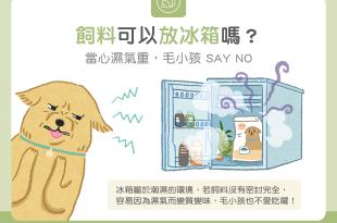 【汪喵餵養知識】飼料可以放冰箱嗎? 當心濕氣重,毛小孩SAY NO!