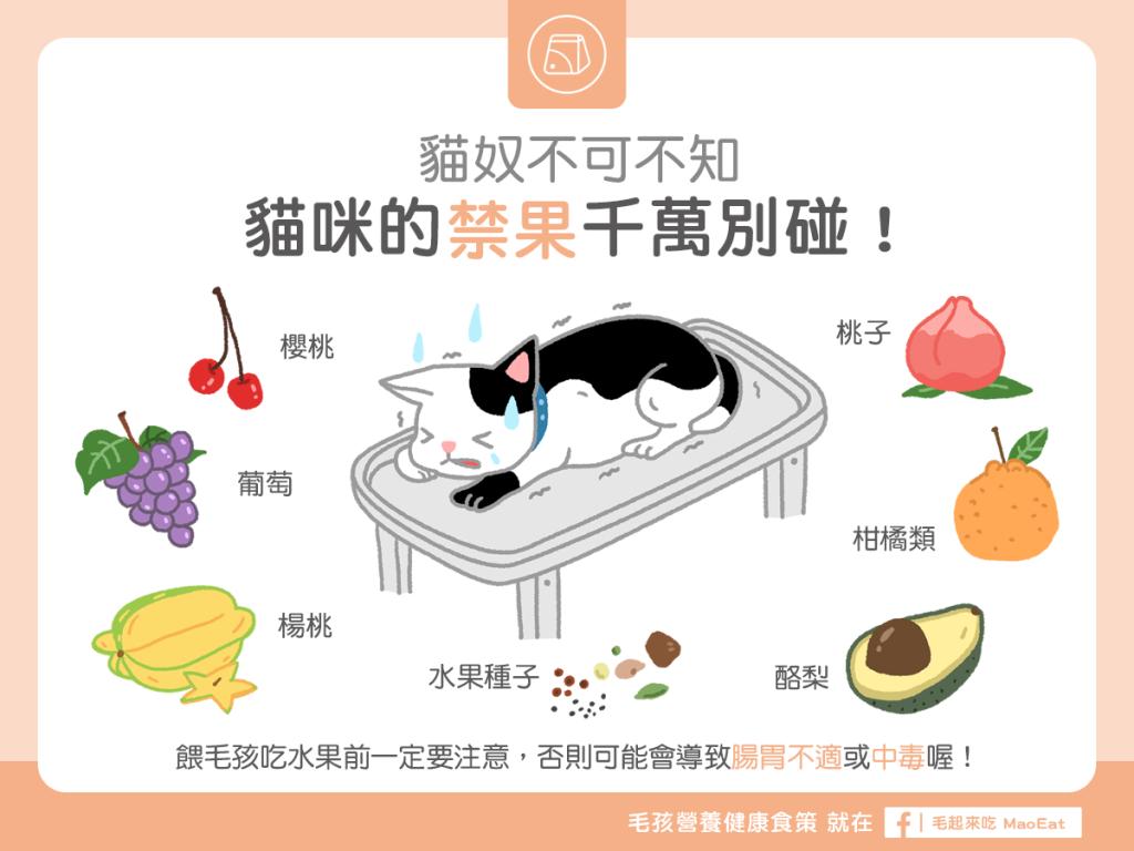 貓咪不可以吃的水果貓咪禁吃水果禁食水果櫻桃葡萄楊桃酪梨柑橘水果桃子危險水果中毒
