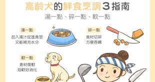 【高齡汪喵飲食】高齡犬的鮮食烹調 3 秘訣