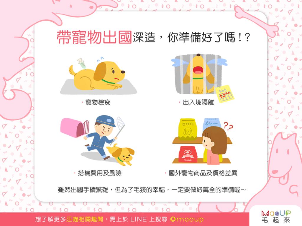 【飼主看過來】想和狗狗貓貓一起出國深造,你準備好了嗎?