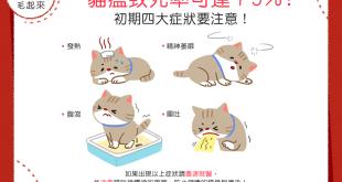 【喵喵康健】貓瘟致死率可達75%!初期4大症狀要注意!