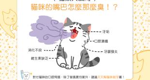 【貓奴大哉問】天啊~貓咪的嘴巴怎麼那麼臭!?