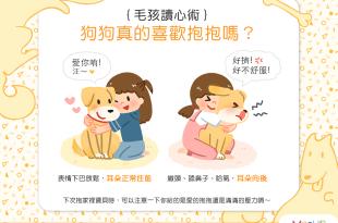 【汪汪真心話】別再自我感覺良好啦!狗狗真的喜歡你的抱抱嗎?