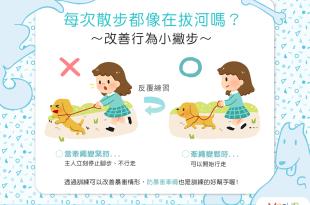 【汪汪訓練術】帶狗狗出門散步都像在拔河嗎?改善行為小撇步!