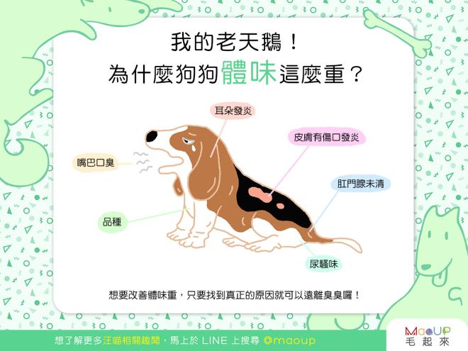 【汪汪康健】我的老天鵝!狗狗體味怎麼這麼重?!