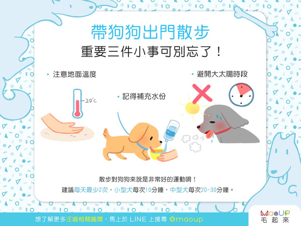 【汪汪出門趣】狗狗開心散步去,莫忘重要3件事!