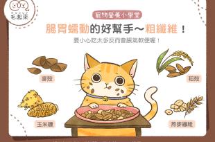 【毛孩食品解析】腸胃蠕動的好幫手~粗纖維
