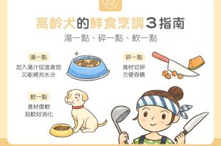 高齡狗犬鮮食料理餵食方法烹調方法