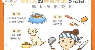 【高齡汪喵飲食】高齡犬的鮮食烹調 3 指南