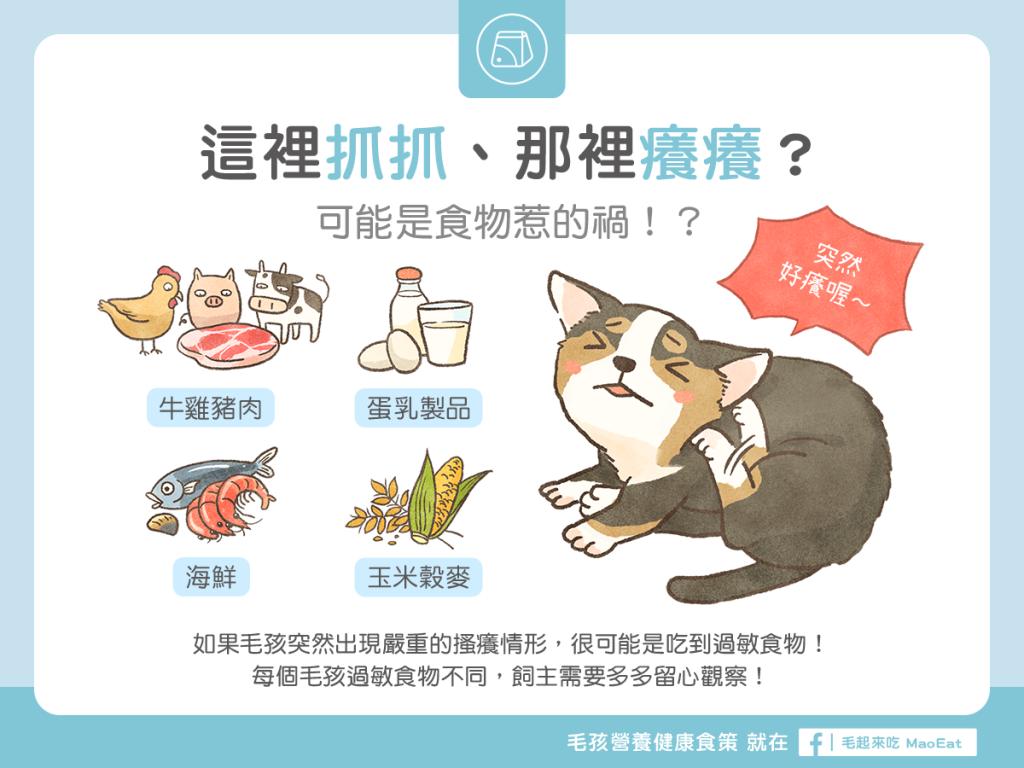 【汪喵疾病飲食】皮膚抓癢可能是食物過敏惹的禍? 容易引起過敏的食材大揭密!