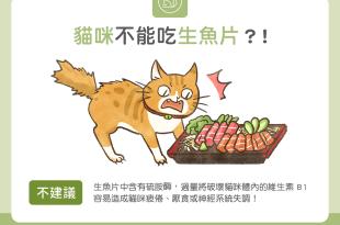 【毛孩食材圖鑑】貓咪不能吃生魚片?!