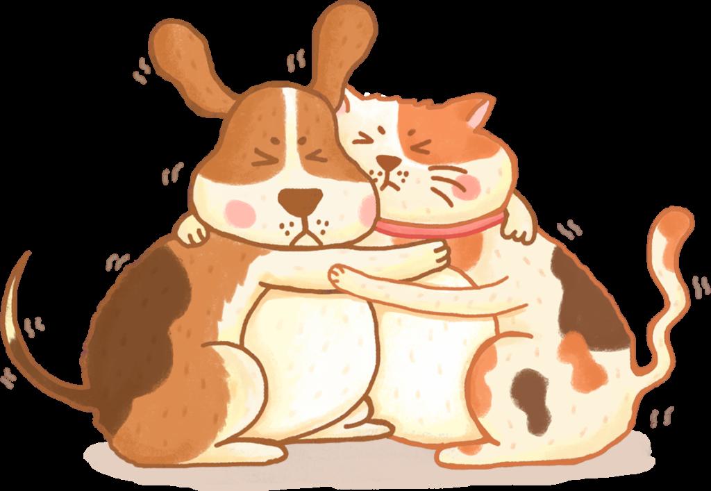 肥胖毛孩胖貓胖狗寵物肥胖問題4大疾病癌症糖尿病呼吸道疾病心血管疾病寵物減肥