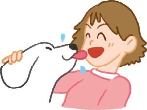 狗舔你代表狗愛你