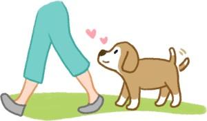 狗是跟屁蟲代表狗愛你