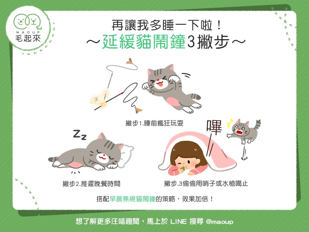 【喵喵訓練術】拜託再讓我多睡一下啦!延緩貓鬧鐘3撇步~