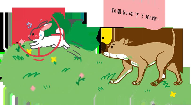 【汪汪知識加】狗狗近視怎麼打獵?就靠超強「動態視覺」!