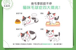 貓得毛球症四大症狀