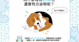【汪汪康健】咦?為什麼母狗結紮完還會有分泌物呢?