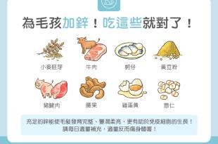 【毛孩食材圖鑑】為毛孩加鋅!吃這些就對了!
