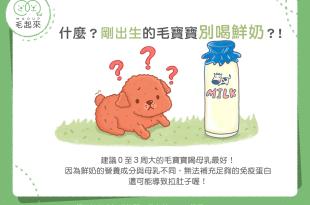 【媽咪幼兒飲食】什麼!剛出生的毛寶寶別喝鮮奶?