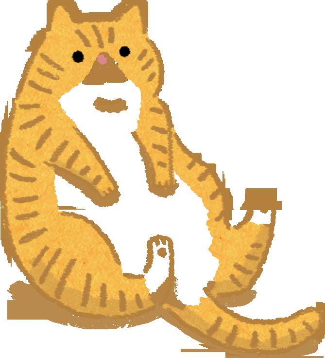 肥胖汪喵飲食呼吸也會胖天生易發胖的貓咪品種易胖品種波斯貓曼島貓英短貓