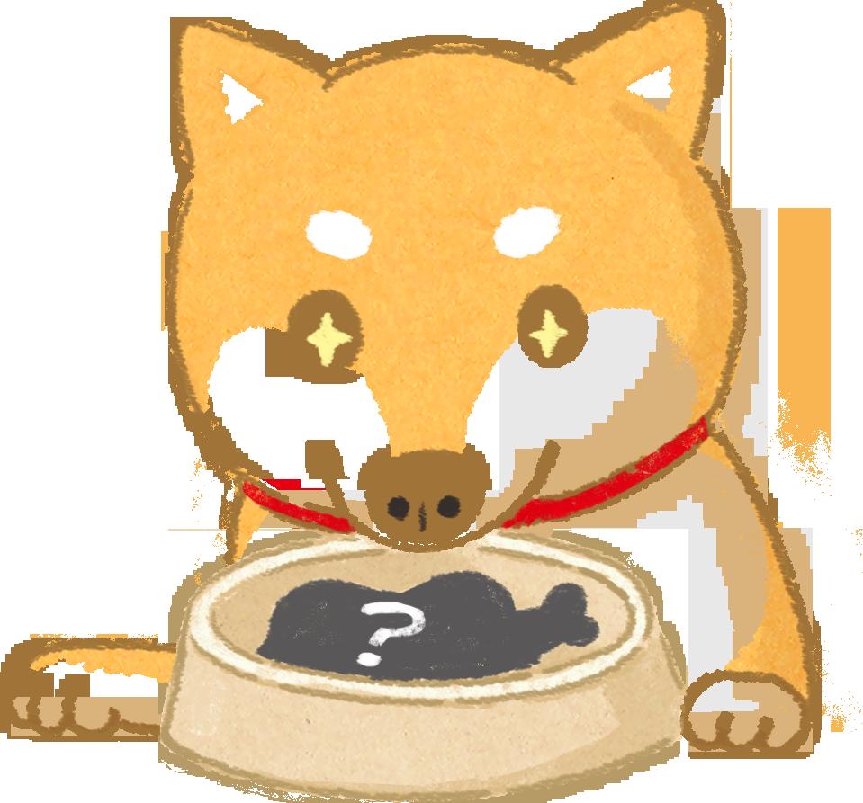 【汪喵餵養知識】食物好不好吃?狗鼻子說了算!