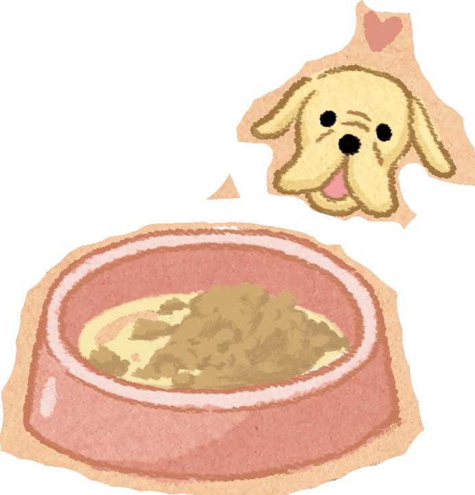 高齡汪喵飲食家中有老狗?飲食多留意!高齡犬貓老狗老貓飲食怎麼吃吃多少分量七歲以上老態咬不動吞嚥困難高齡寵物