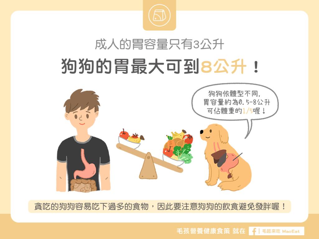 【汪喵餵養知識】大胃王!狗狗的胃最大可到8公升!