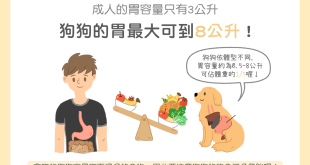 【汪喵餵養知識】家有大胃王!狗狗的胃最大可到8公升!