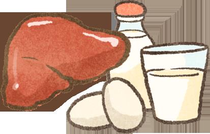貓咪天生缺乏不足的營養素牛磺酸維生素A維生素D需從食物補充