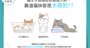 【喵喵知識加】驚見貓咪大法師!難不成貓咪都是水做的?!