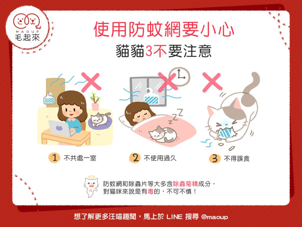 【居家安全要注意】貓奴們注意了!使用防蚊網請避免這3件事!