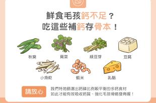 【鮮食烹飪秘訣】鮮食毛孩鈣不足? 吃這些補鈣存骨本!