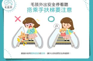 【汪汪出門趣】狗狗外出停看聽~搭乘手扶梯要注意!