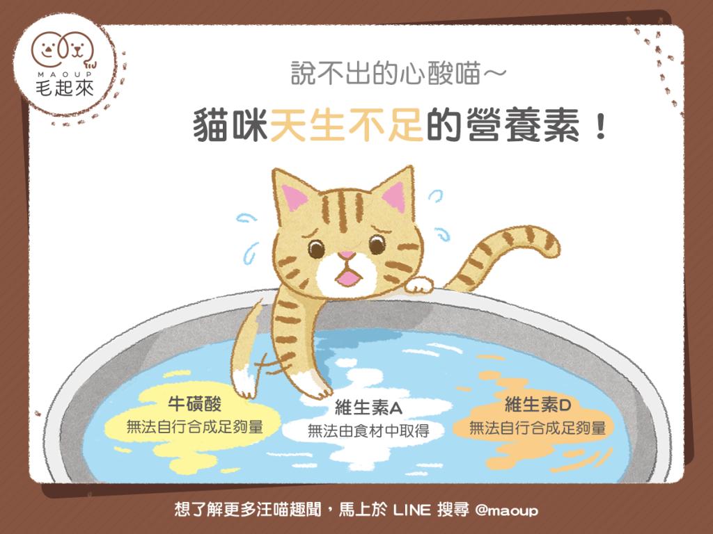 【毛孩食材圖鑑】說不出的心酸喵~貓咪天生不足的營養素!