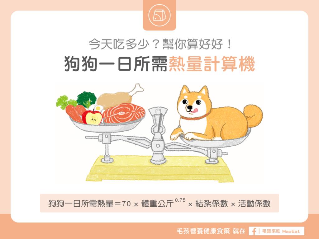 狗一日熱量計算狗吃飯熱量計算一餐熱量狗狗一日所需熱量計算機吃多吃少幫你算好好體重推算熱量寵物