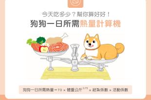 【汪喵餵養知識】狗狗一日所需熱量計算機~吃多吃少幫你算好好!