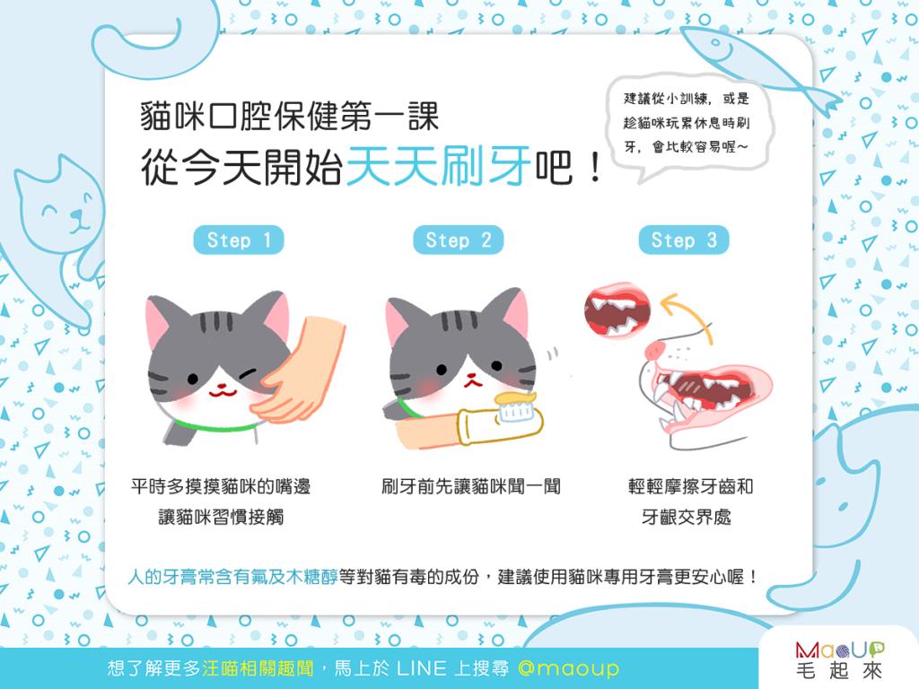 【貓咪的口腔保健】簡單步驟123,給喵清新好口氣!