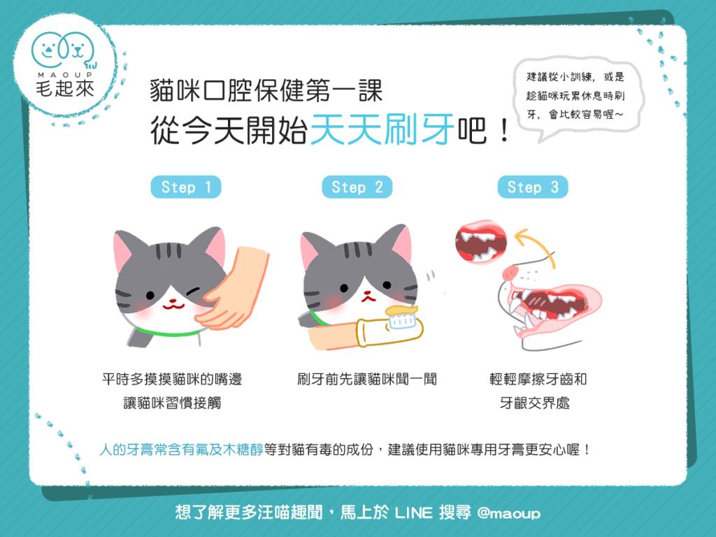 幫貓刷牙,簡單三步驟