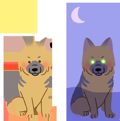 褐色眼睛-黃綠光