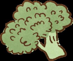 花椰菜富含葉黃素