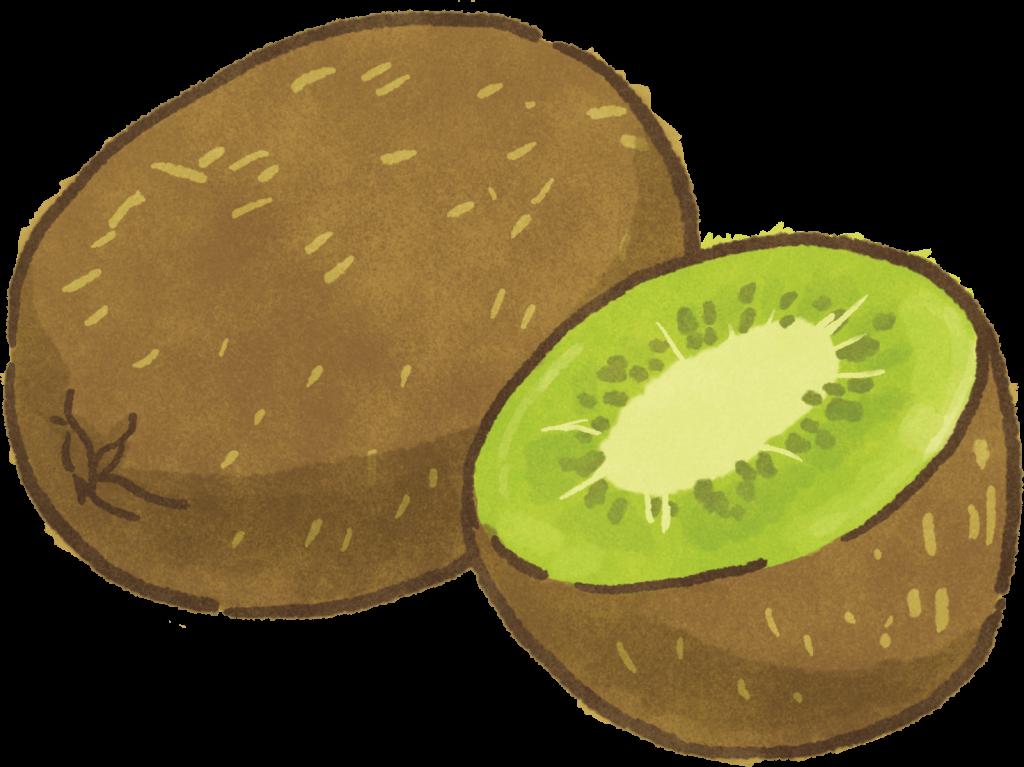 貓狗寵物可以吃水果水果代替零食更健康!哪種水果是維生素C之王?